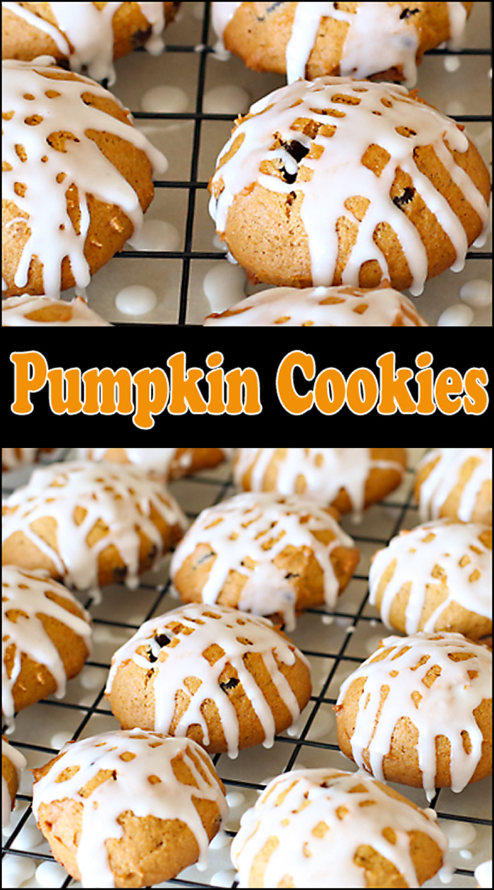 Pumpkin Spice Cookies - Joy In Every Season